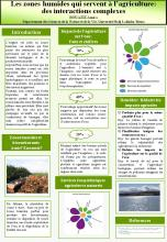 World Wetlands Day 2014 Algeria Poster